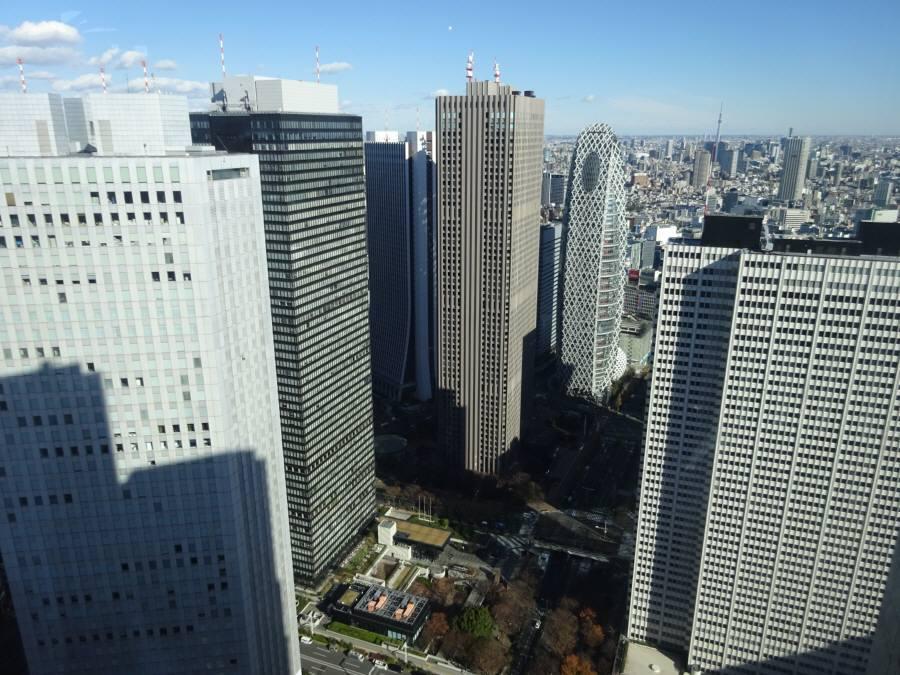 東京都庁展望室_f0059673_19050336.jpg