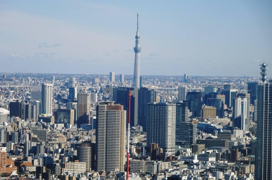 東京都庁展望室_f0059673_19051715.jpg