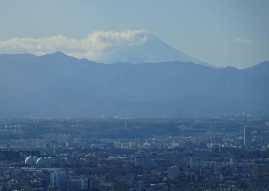 東京都庁展望室_f0059673_19052887.jpg