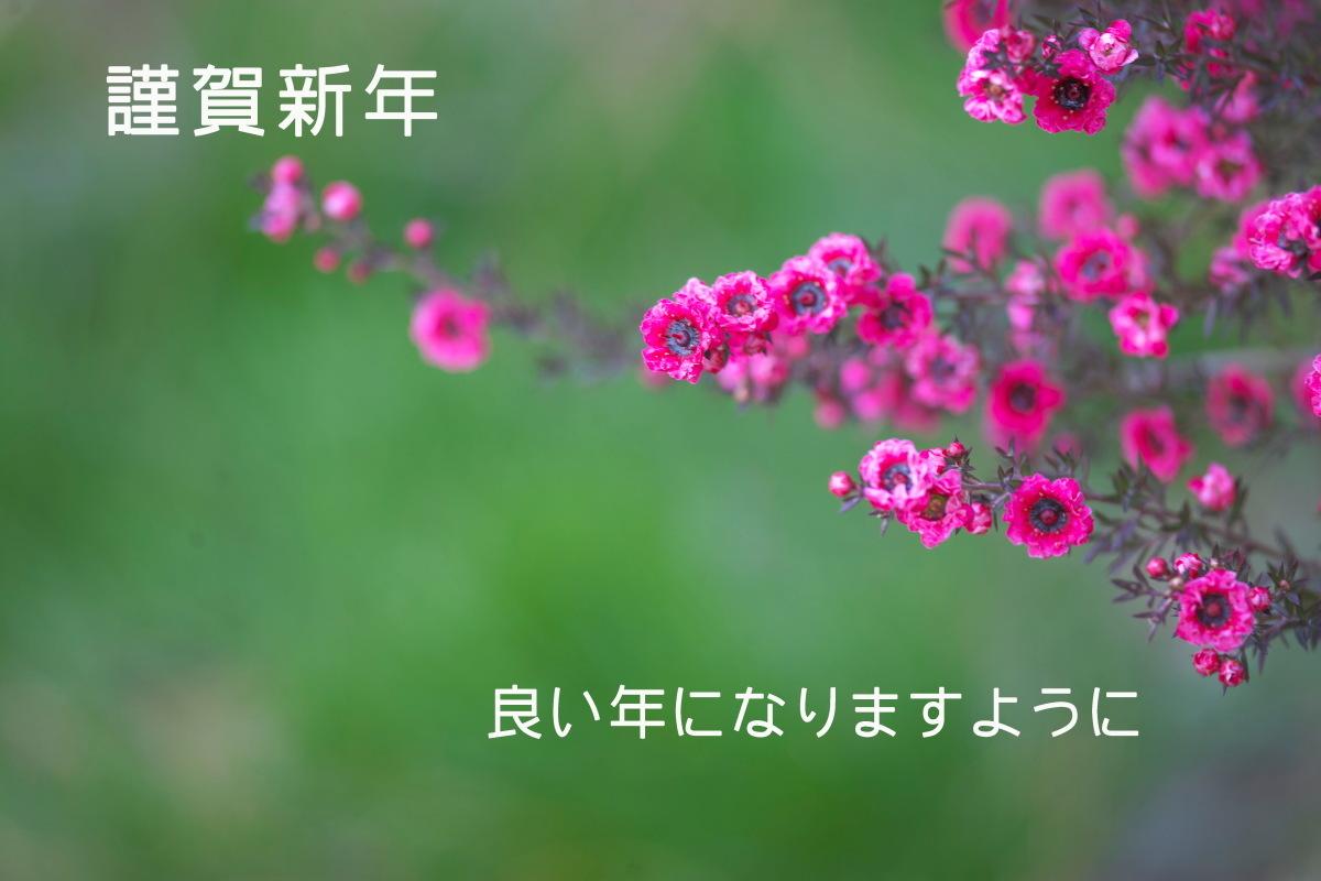 b0044477_22303136.jpg