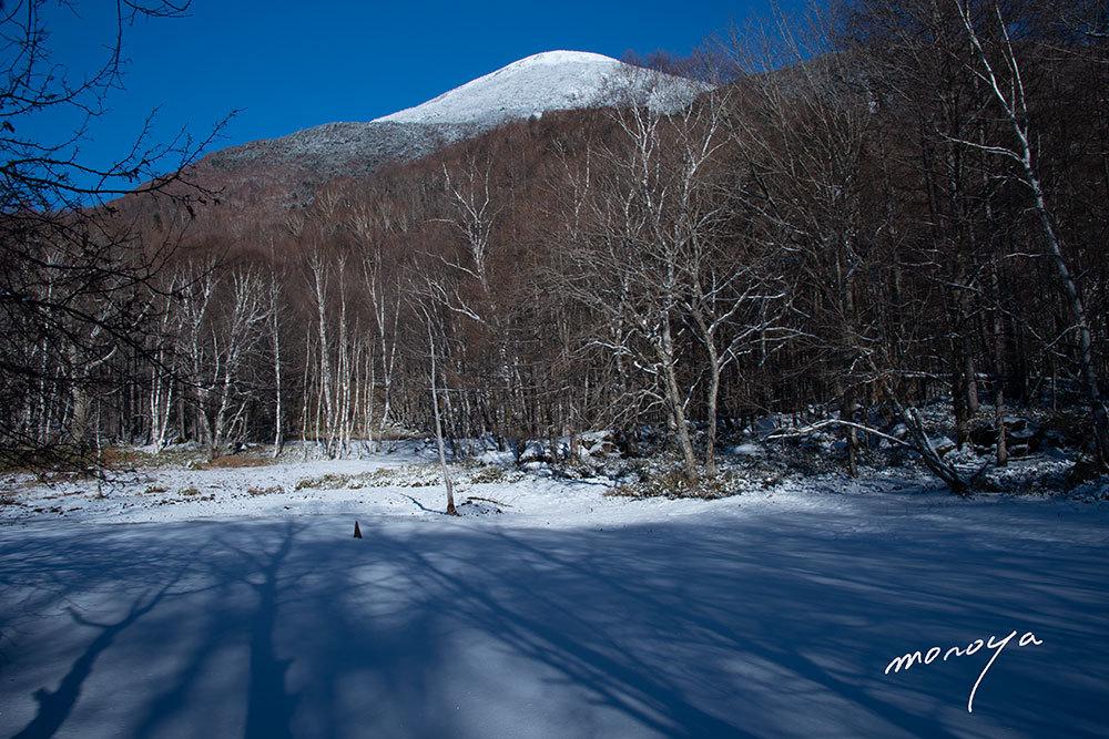 冬晴れ_c0085877_04550088.jpg