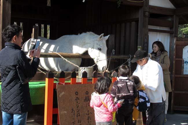 初もうで 上賀茂神社_e0048413_22244035.jpg