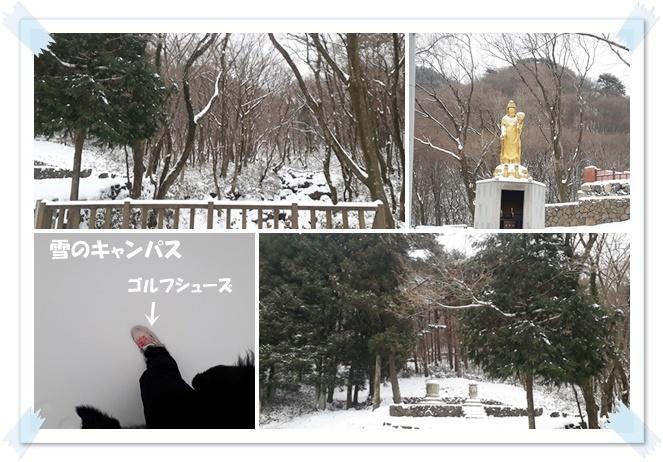 🎵 2019・1 天王寺 🎵_a0115924_16245461.jpg