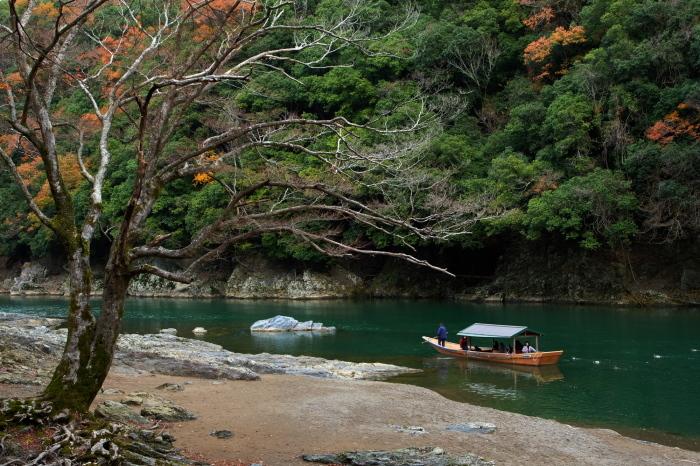 嵐山 紅葉2018_f0021869_23402541.jpg