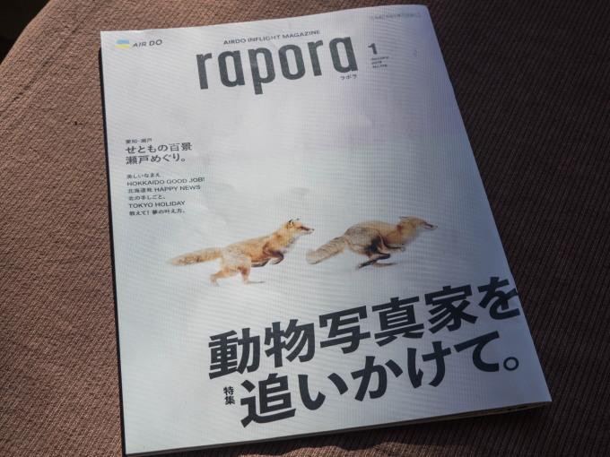 新年初エゾリス君が2匹・・AIR DOの機内誌にも掲載!_f0276498_15003377.jpg