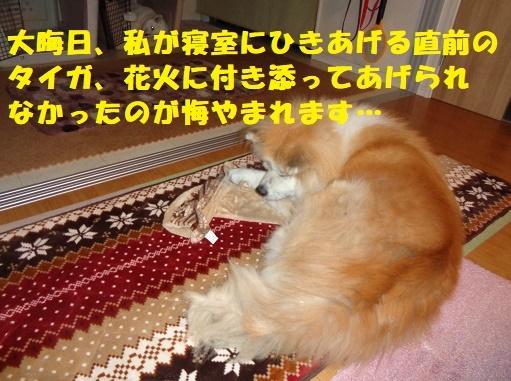 f0121712_17583390.jpg