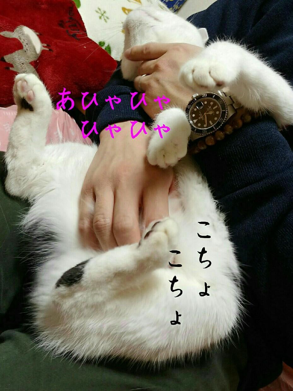 e0338831_01011302.jpg