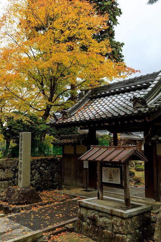 滋賀の紅葉2018 引接寺の秋景色_f0155048_2244858.jpg