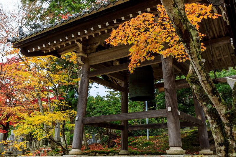 滋賀の紅葉2018 引接寺の秋景色_f0155048_2245211.jpg