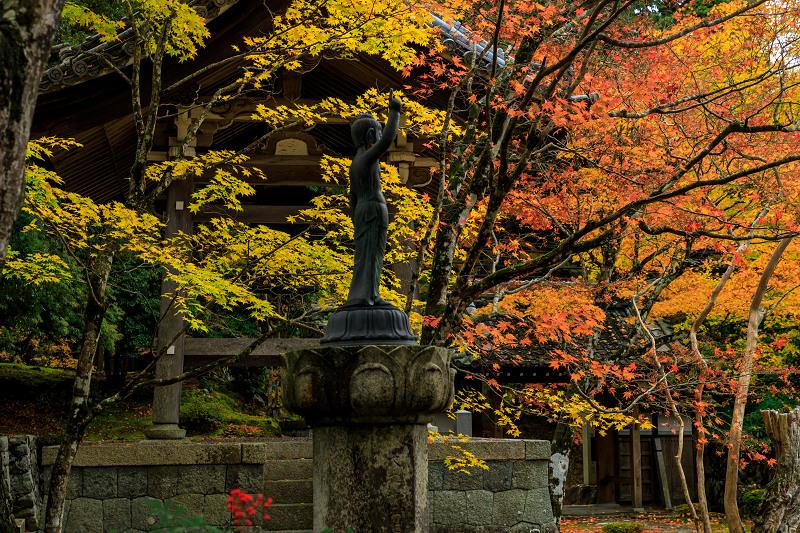 滋賀の紅葉2018 引接寺の秋景色_f0155048_224555.jpg