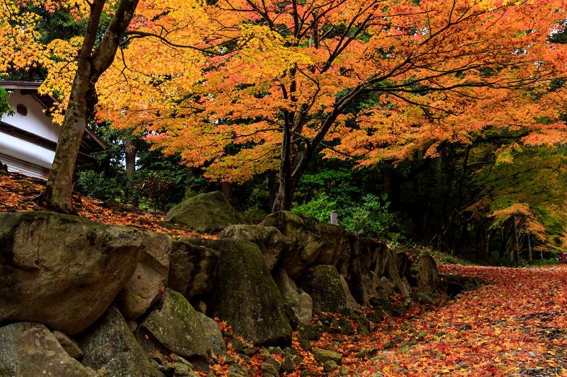 滋賀の紅葉2018 引接寺の秋景色_f0155048_225406.jpg