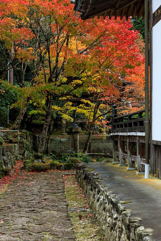 滋賀の紅葉2018 引接寺の秋景色_f0155048_225767.jpg