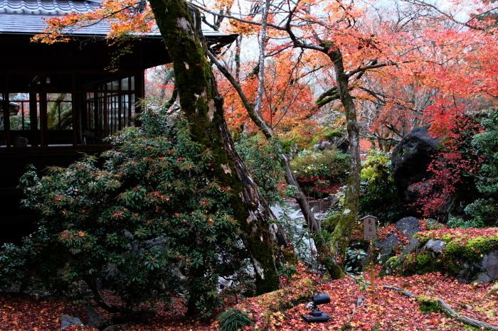 嵐山 紅葉2018_f0021869_23011776.jpg