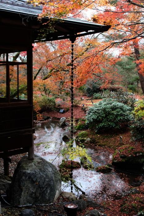 嵐山 紅葉2018_f0021869_23012062.jpg