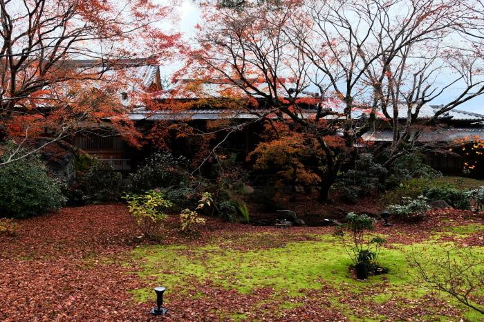 嵐山 紅葉2018_f0021869_23045950.jpg