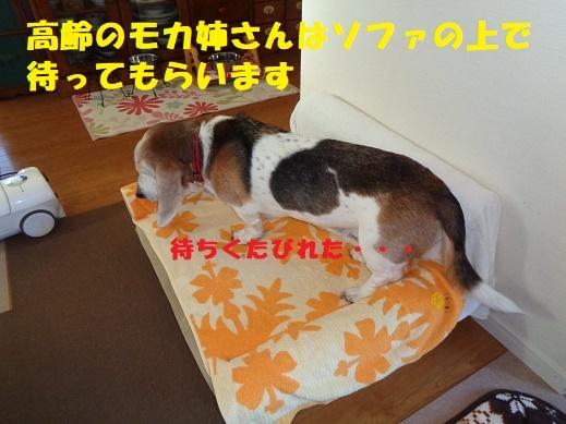 f0121712_00020007.jpg