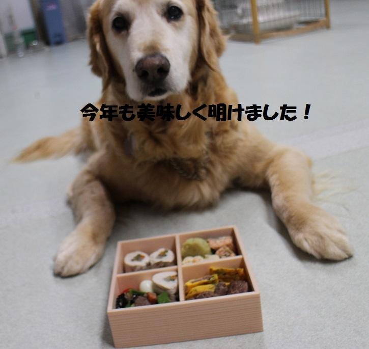 f0170713_09105351.jpg