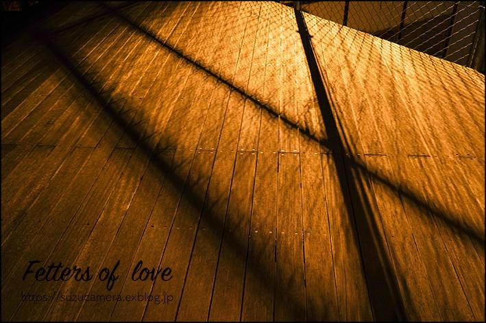 恋はじめます!_f0100215_00131372.jpg