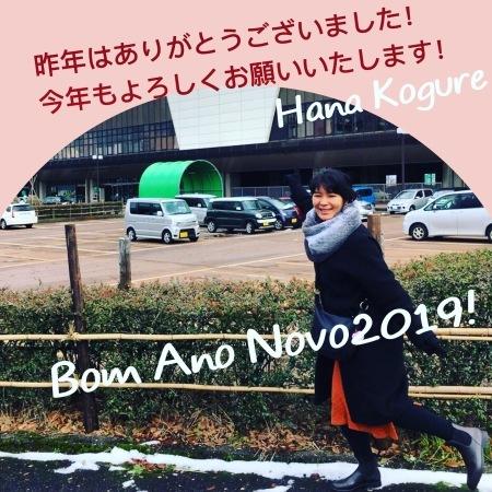 Bom Ano Novo2019!_c0146817_11534177.jpeg