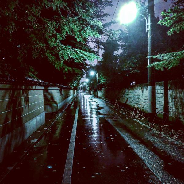 杉並区今川 / iPhone 8_c0334533_16251350.jpg