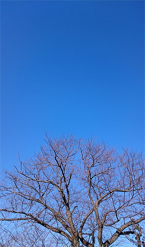 『 蒼空 』を弾いてみました!_c0137404_18062221.jpg