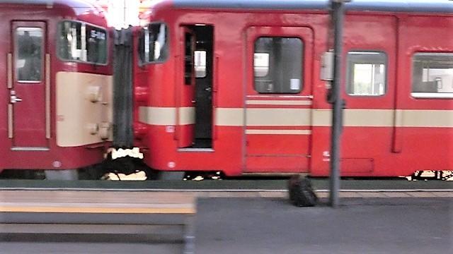 藤田八束の鉄道写真@仲の良い二人に会って嬉しいです。・・・目線で変わる車両の可愛さ、連結部分の可愛さ_d0181492_10082785.jpg
