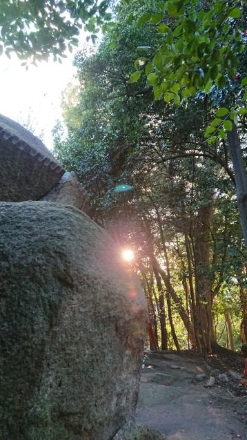 お気に入りの神社_e0167593_22092109.jpg