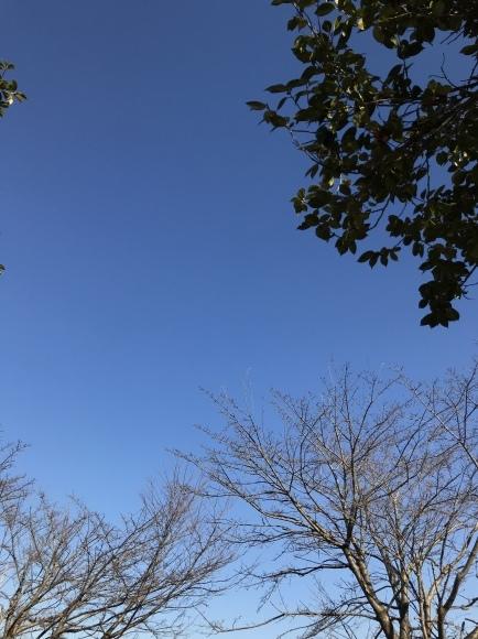 3月の気温だったらしいですよ。_a0155999_21493750.jpeg