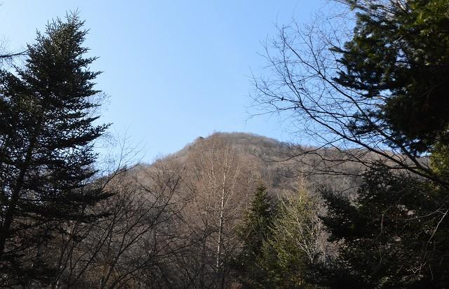 冬の軽井沢②:離山へ_c0124100_16143077.jpg