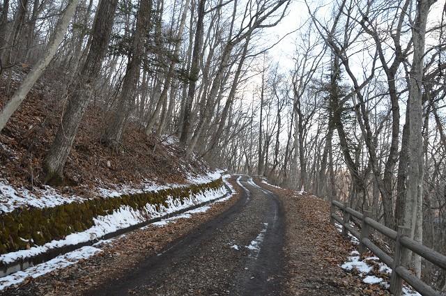 冬の軽井沢②:離山へ_c0124100_16144265.jpg