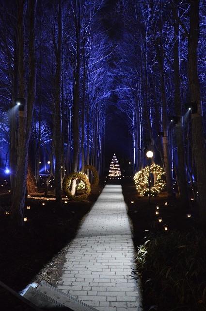 冬の軽井沢③:Hotel Bleston Court_c0124100_17325154.jpg