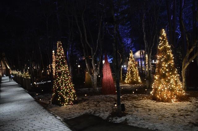 冬の軽井沢③:Hotel Bleston Court_c0124100_17325592.jpg