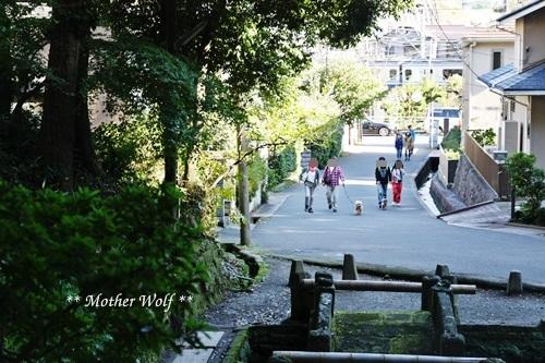 第25回マザーウルフ遠足 鎌倉源氏山レポート_e0191026_13143180.jpg