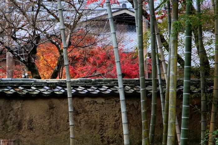 嵐山 紅葉2018_f0021869_15395426.jpg