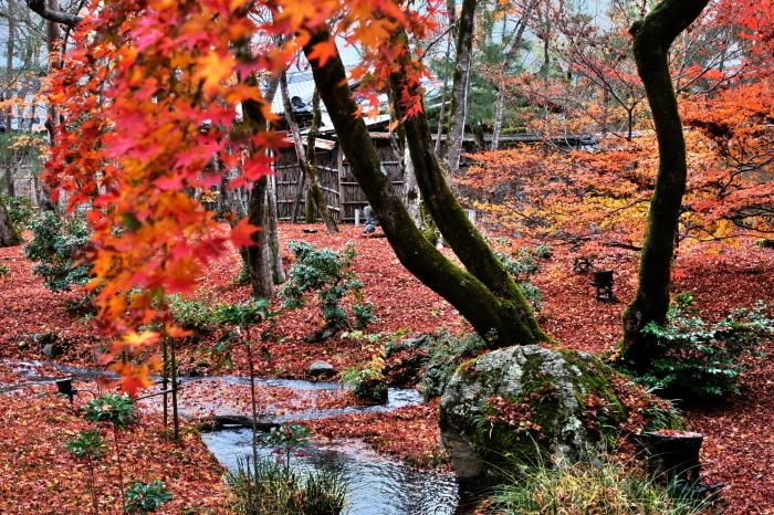 嵐山 紅葉2018_f0021869_15395715.jpg
