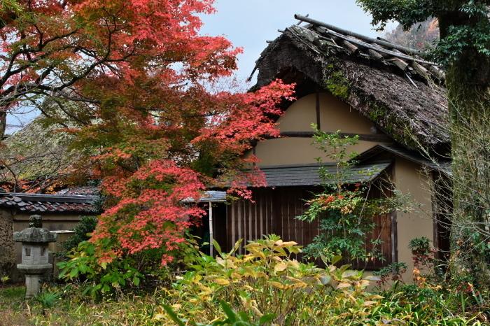 嵐山 紅葉2018_f0021869_15411092.jpg