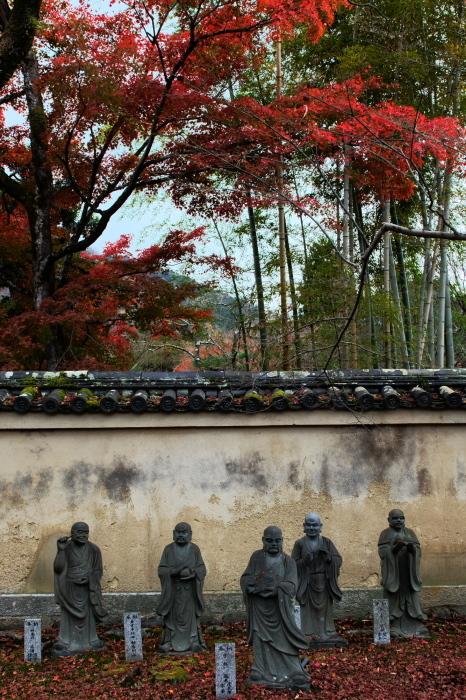 嵐山 紅葉2018_f0021869_15444256.jpg
