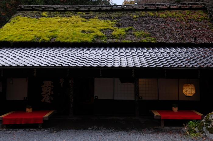 嵐山 紅葉2018_f0021869_15531434.jpg
