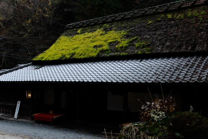 嵐山 紅葉2018_f0021869_15531440.jpg