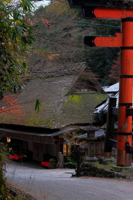 嵐山 紅葉2018_f0021869_15531500.jpg