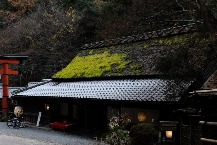 嵐山 紅葉2018_f0021869_15531567.jpg