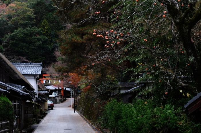 嵐山 紅葉2018_f0021869_15551147.jpg