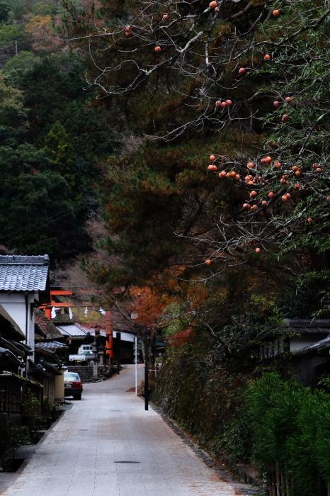 嵐山 紅葉2018_f0021869_15551152.jpg