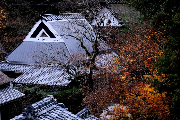 嵐山 紅葉2018_f0021869_16150817.jpg
