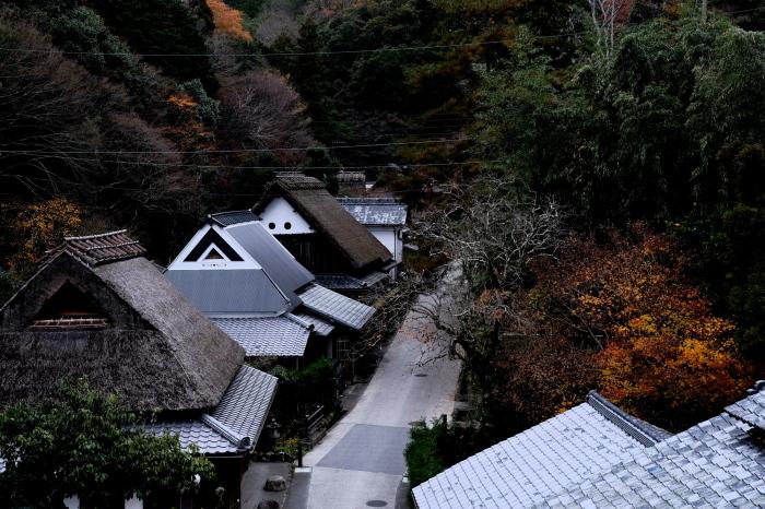 嵐山 紅葉2018_f0021869_16150870.jpg