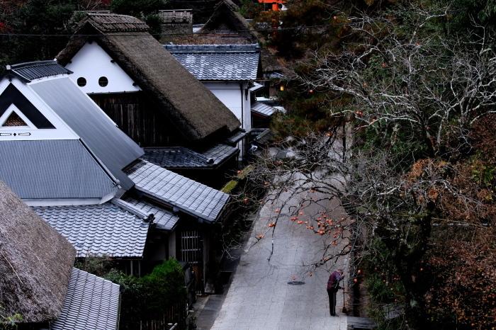 嵐山 紅葉2018_f0021869_16150963.jpg