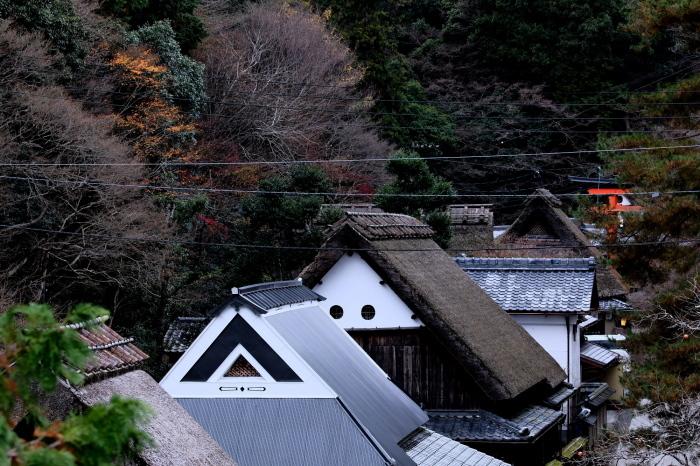 嵐山 紅葉2018_f0021869_16151083.jpg