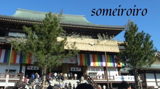 成田山の正月飾り?_e0086881_22264559.jpg