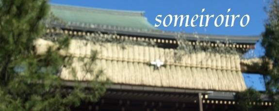成田山の正月飾り?_e0086881_22265415.jpg