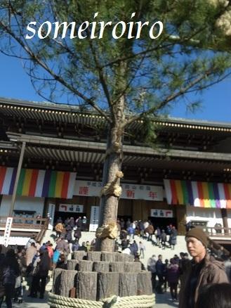 成田山の正月飾り?_e0086881_22270036.jpg